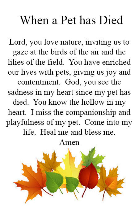Prayer for when a Pet has Died