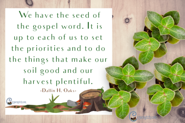 parable of the sower quote